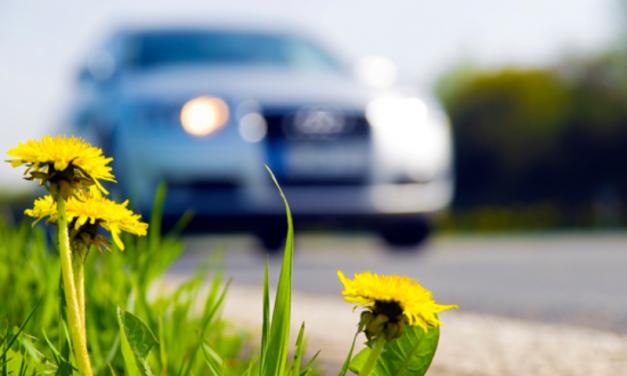 Autoverzekering opzeggen: wat is de opzegtermijn?
